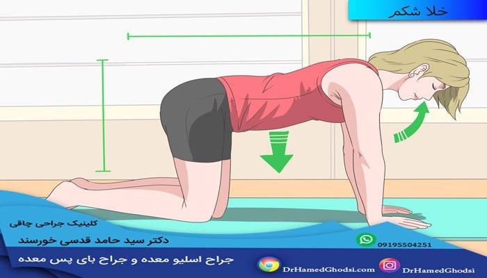 لاغر کردن شکم با ورزش
