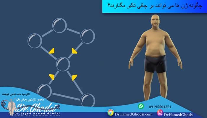 چگونه ژن ها می توانند بر چاقی تأثیر بگذارند؟